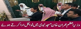 PM Offering Nawafil in Masjid Nabvi