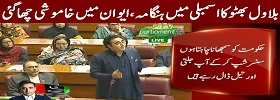 Bilawal Bhutto Speech in Assembly
